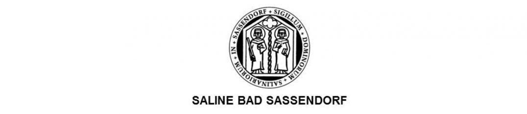 saline_badsassendorf